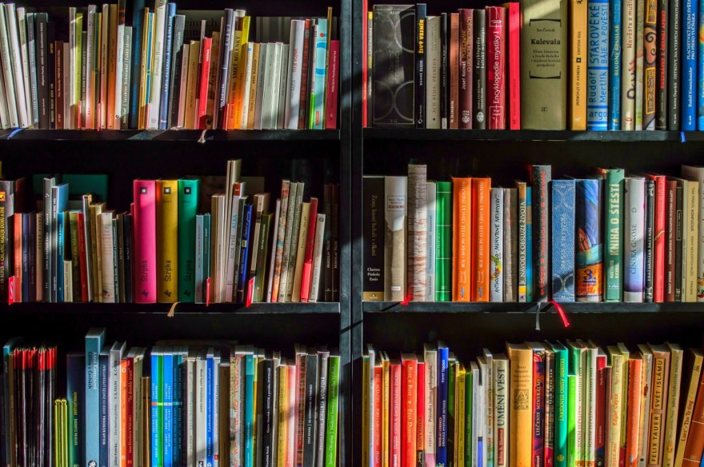 books_bookstore_book_reading_shop_writer_sale_books_read-822866
